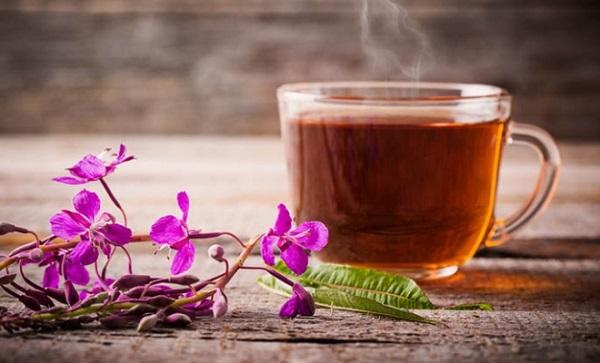иван чай при гастрите как пить
